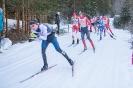 42. Dolomitenlauf Obertilliach (24.1.2016)