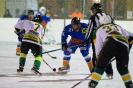 Eishockey Leisach gegen Irischen (2.1.2016)