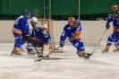 Eishockey Debant gegen Leisach2 (29.12.2017)