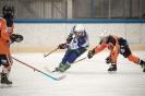 Eishockey UECR Huben/Virgen/Spittal gegen USC Velden U14 (26.2.2017)