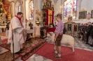 Prozession mit Widder zur Wallfahrtskirche Lavant (15.4.2018)