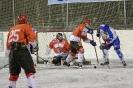 Eishockey Leisach gegen Lienz (8.2.2019)