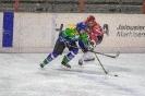 Eishockey Lienz gegen Virgen (9.2.2019)
