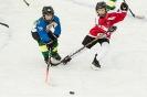 Eishockey U12 UEC Sparkasse Lienz U12 gegen SGSpittal/Irschen/Oberdrauburg U12 (11,1,2020)_6